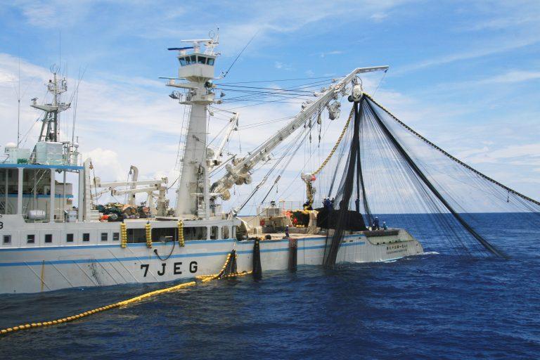 漁の様子揚巻