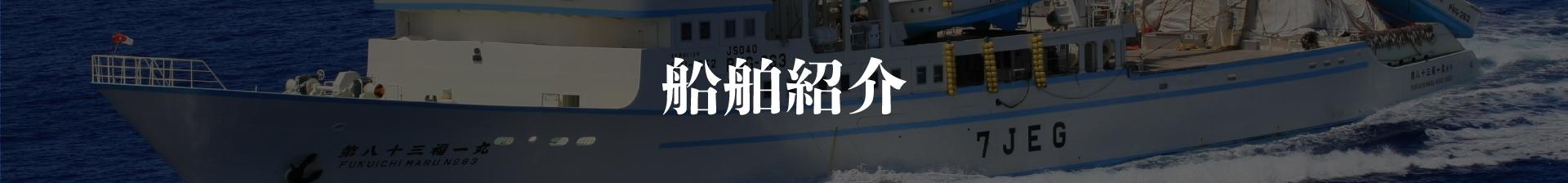 船舶紹介キャッチ