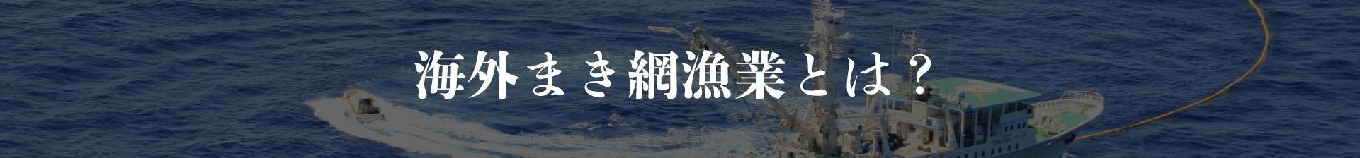 海外まき網漁業とはキャッチ