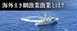海外まき網漁業とはバナー